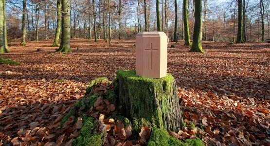 Baum Bestattung